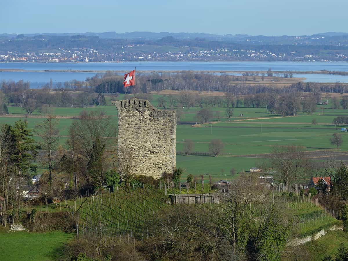 Burgruine Alt-Rheineck